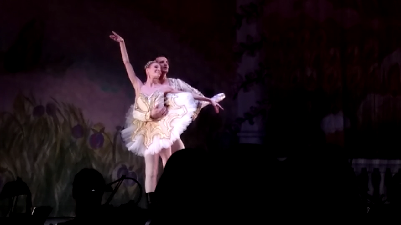 The Nutcracker Ballet (Gallery)