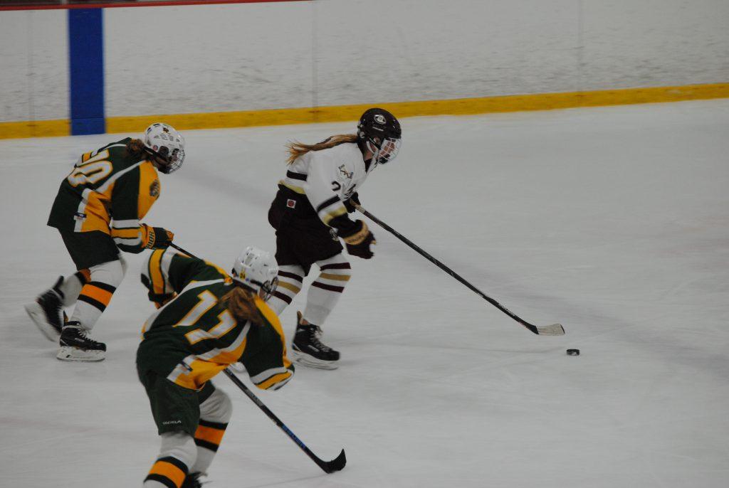 g+hockey+10