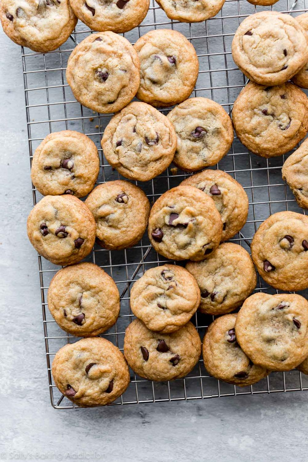 A new batch of chocolate chip cookies. | photo from Google Images