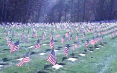 Operation Flags for Vets