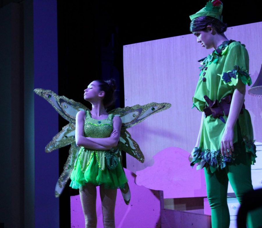 Tinkerbell is stubborn with Peter |by Brianna Devlin